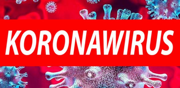 Zakażenie koronawirusem w Szkole Podstawowej w Sterkowcu / 8 października 2020 r.